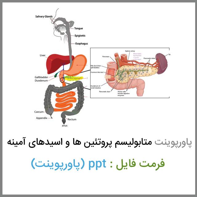 دانلود فایل پاورپوینت متابولیسم پروتئین ها و اسیدهای آمینه